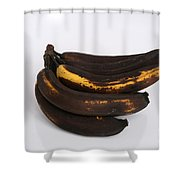 Banana Ripening Sequence Shower Curtain