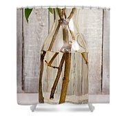 Flowers - Freshly Cut Lilacs Shower Curtain
