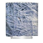7. Ice Encrustation, Upper West Allen Shower Curtain