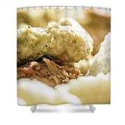Indonesian Food Shower Curtain