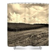 Iowa Cornfield Shower Curtain
