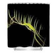 Liquid Latex Shower Curtain