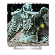 Monumental Cemetery Of Staglieno Shower Curtain