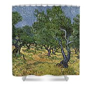 Olive Orchard Shower Curtain