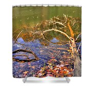 Rose Lake Shower Curtain
