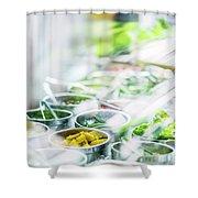 Salad Bar Buffet Fresh Mixed Vegetables Display Shower Curtain