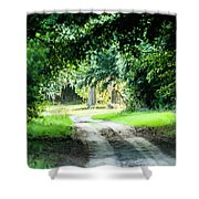 Scenes At Botany Bay Plantation Near Charleston South Carolina Shower Curtain