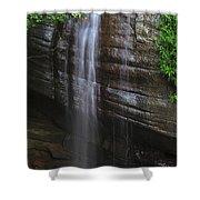 Serenity Falls Shower Curtain