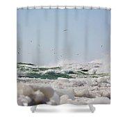 7170 Shower Curtain