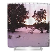Snowy Desert Landscape Shower Curtain