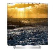 77 Shower Curtain