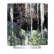 7850 Shower Curtain