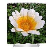 Australia - White Yellow Daisy Flower Shower Curtain