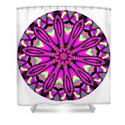794-04-2015 Talisman Shower Curtain