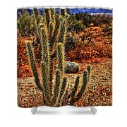 Anza-borrego Desert State Park Shower Curtain