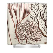 Aquatic Animals - Seafood - Algae - Seaplants - Coral Shower Curtain