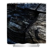 Bark Shower Curtain