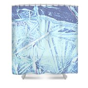 8. Ice Patterns, Whitfield Shower Curtain