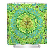 Indian Fabric Pattern Shower Curtain