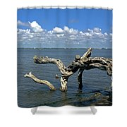 Indian River Lagoon Shower Curtain