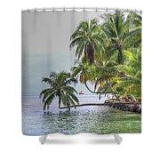 Moorea Tahiti Shower Curtain