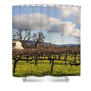 Napa Valley Vineyard Shower Curtain