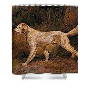 Osthaus Edmund Henry Commissioner A Champion English Setter Edmund Henry Osthaus Shower Curtain