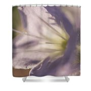 Pastel Purple Flowers Shower Curtain
