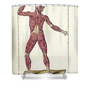 The Science Of Human Anatomy Shower Curtain
