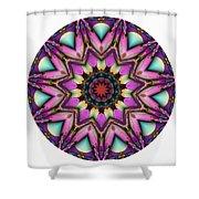 800-04-2015 Talisman Shower Curtain
