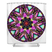 803-04-2015 Talisman Shower Curtain