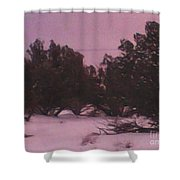 Snowy Desert Landscape Shower Curtain