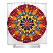810-04-2015 Talisman Shower Curtain