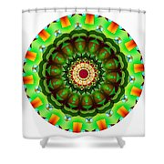 811-04-2015 Talisman Shower Curtain