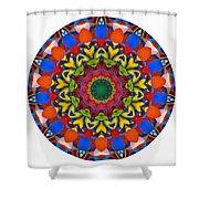 812-04-2015 Talisman Shower Curtain