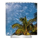 8156- Palm Tree Shower Curtain