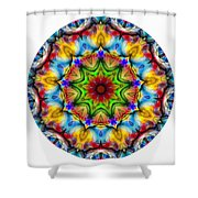 816-04-2015 Talisman Shower Curtain