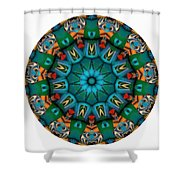 818-04-2015 Talisman Shower Curtain