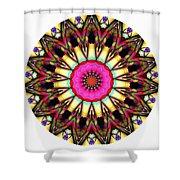 819-04-2015 Talisman Shower Curtain