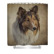 8321890 Shower Curtain