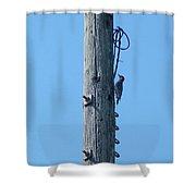 #866x Woodpecker Shower Curtain