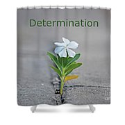 88- Determination Shower Curtain