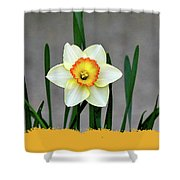 9-11-3057t Shower Curtain
