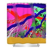 9-12-2057c Shower Curtain