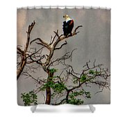Botswana Shower Curtain