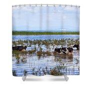 Lake Beysehir - Turkey Shower Curtain