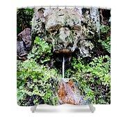 Public Fountain In Palma Majorca Spain Shower Curtain