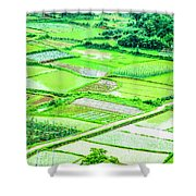 Rice Fields Scenery Shower Curtain