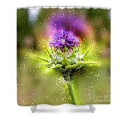 Silybum Eburneum Milk Thistle Shower Curtain
