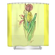 Sketches Shower Curtain